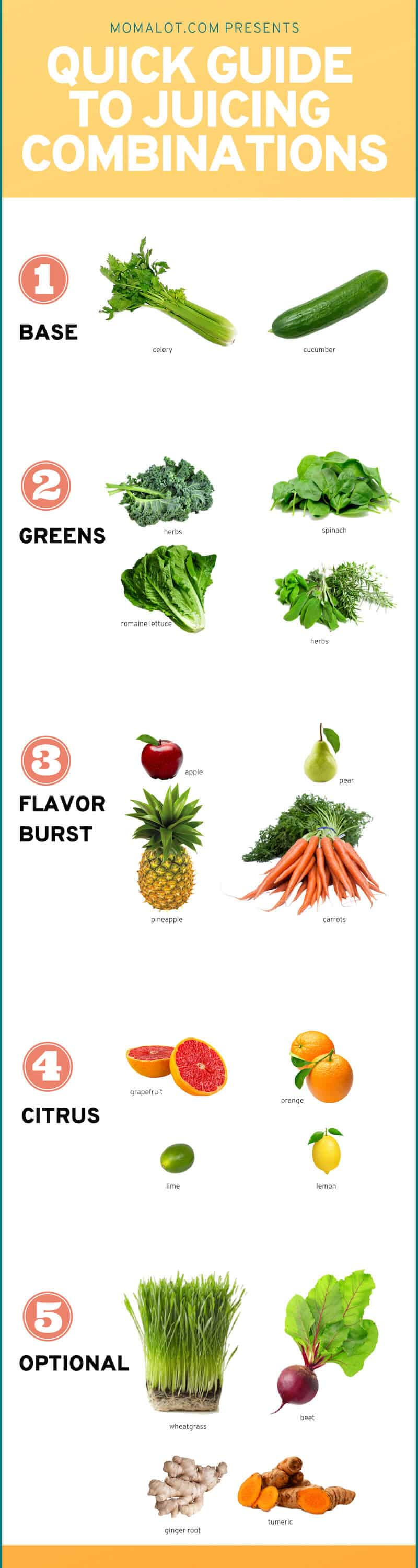 Create Juice Combinations That Won't Make You Gag Quick Reference Guide